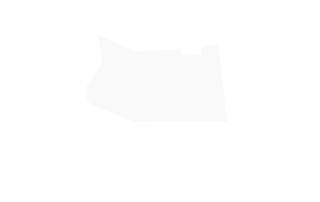 Fulton County Criminal Attorney